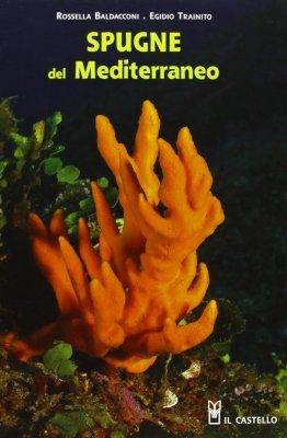 Spugne del Mediterraneo [Sponges of the Mediterranean]