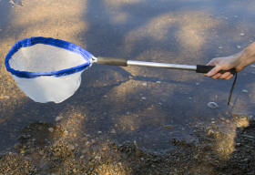 Universal Frame Pond Dipping Net