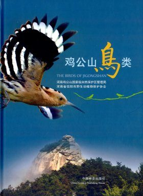 The Birds of Jigongshan [Chinese]