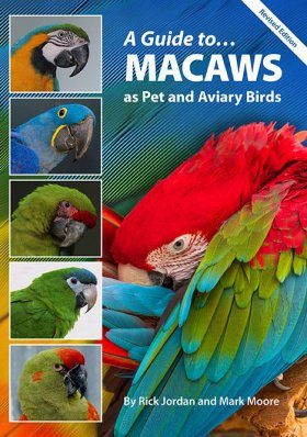 A Guide to Macaws as Pet and Aviary Birds