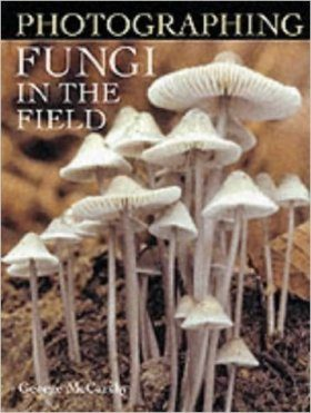 Photographing Fungi in the Field