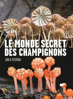 Le Monde Secret des Champignons [The Kingdom of Fungi]