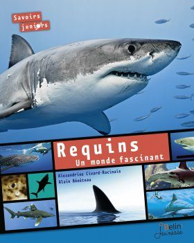 Requins: Un Monde Fascinant [Sharks: A Fascinating World]