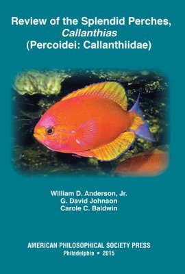 Review of the Splendid Perches, Callanthias (Percoidei: Callanthiidae)
