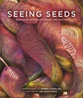 Seeing Seeds