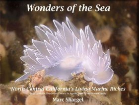 Wonders of the Sea, Volume 1: North Central California's Living Marine Riches
