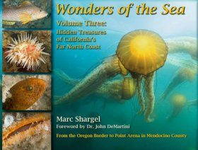 Wonders of the Sea, Volume 3: Hidden Treasures of California's Far North Coast