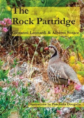 The Rock Partridge
