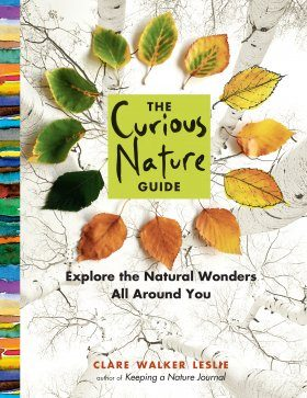 The Curious Nature Guide