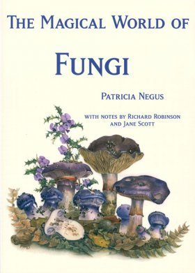 The Magical World of Fungi