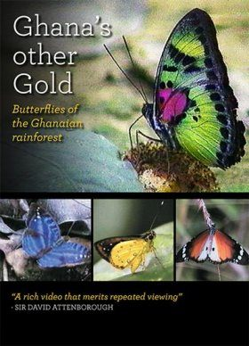 Ghana's Other Gold: Butterflies of the Ghanaian Rainforest (All Regions)