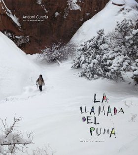 La Llamada del Puma: Looking for the Wild [Spanish]