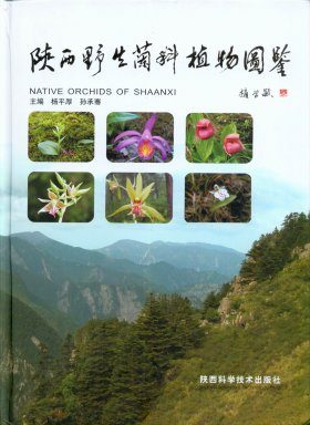 Native Orchids of Shaanxi [English / Chinese]