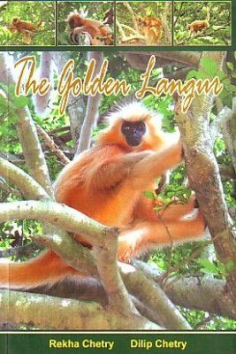 The Golden Langur