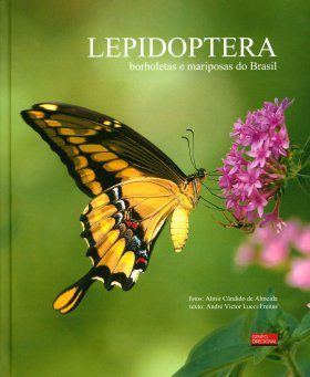 Lepidoptera: Borboletas e Mariposas do Brasil [Lepidoptera: Butterflies and Moths of Brazil]