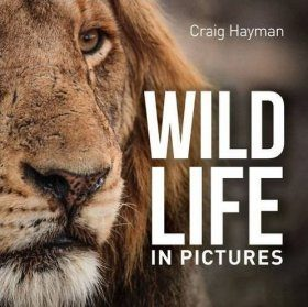 Wildlife in Pictures