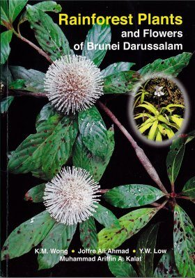 Rainforest Plants and Flowers of Brunei Darussalam