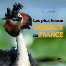 Les Plus Beaux Oiseaux de France [The Most Beautiful Birds of France]