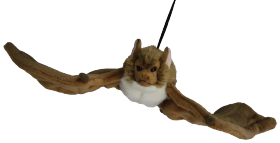 Brown Long-eared Bat Soft Toy