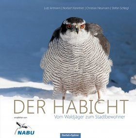 Der Habicht: Vom Waldjäger zum Stadtbewohner [The Northern Goshawk: From Forest Hunters to Urban Residents]