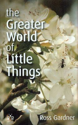 The Greater World of Little Things