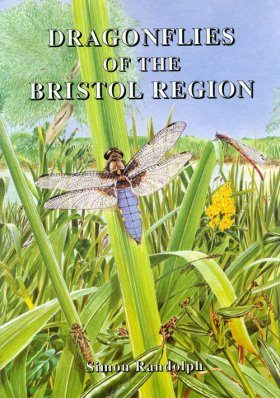 Dragonflies of the Bristol Region