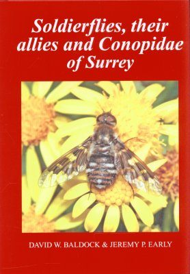 Soldierflies, their Allies and Conopidae of Surrey