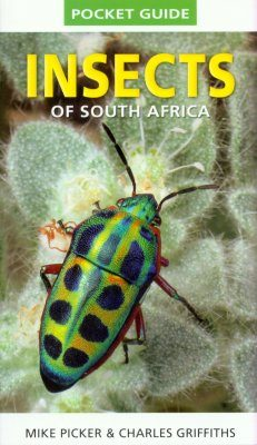 Struik Pocket Guide: Insects of South Africa