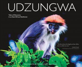 Udzungwa: Tales of Discovery in an East African Rainforest