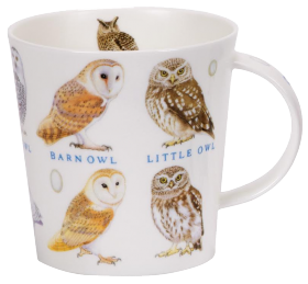 Owls and Eggs Mug
