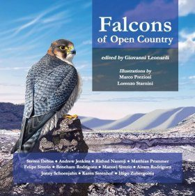 Falcons of Open Country