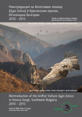 Reintroduction of Griffon Vulture Gyps fulvus in Kresna Gorge, Southwest Bulgaria 2010-2015 [English / Bulgarian]