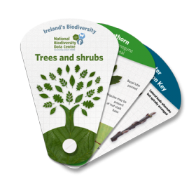 Ireland's Biodiversity: Trees & Shrubs