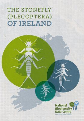 The Stonefly (Plecoptera) of Ireland