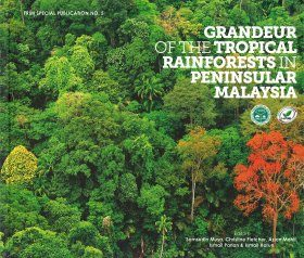 Grandeur of the Tropical Rainforest in Peninsular Malaysia