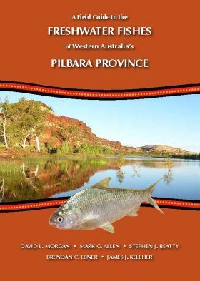 A Field Guide to the Freshwater Fishes of Western Australia's Pilbara Province