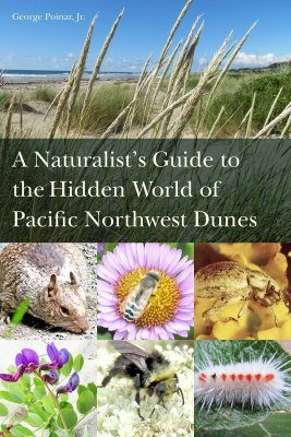 A Naturalist's Guide to the Hidden World of Pacific Northwest Dunes