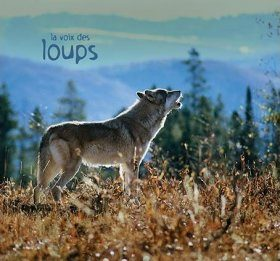 La Voix des Loups [The Voices of Wolves]