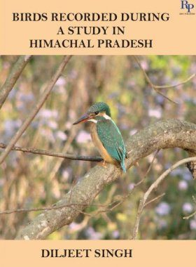 Birds Recorded During a Study in Himachal Pradesh