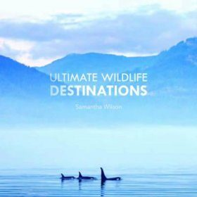The Ultimate Wildlife Destinations
