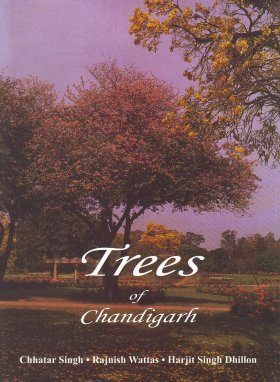 Trees of Chandigarh