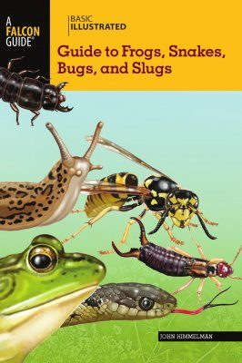 Basic Illustrated Guide to Frogs, Snakes, Bugs, and Slugs
