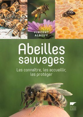 Abeilles Sauvages: Les Connaître, les Accueillir, les Protéger [Wild Bees: Recognizing, Welcoming and Protecting Them]