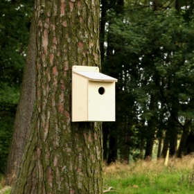 Flatpack Bird Box - 32mm Entrance Hole