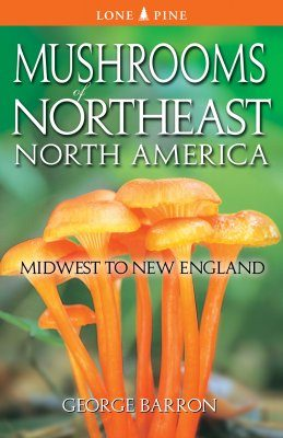 Mushrooms of Northeast North America