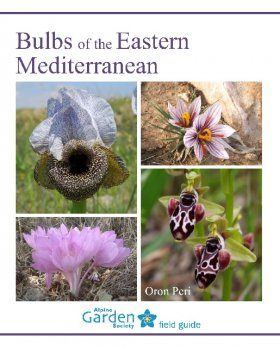 Bulbs of the Eastern Mediterranean