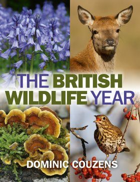 The British Wildlife Year