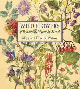 Wild Flowers of Britain