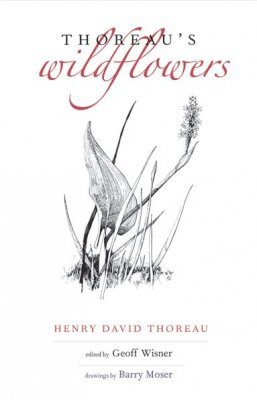 Thoreau's Wildflowers