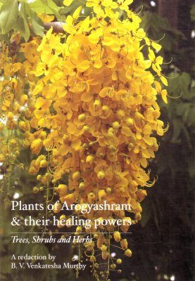 Plants of Arogyashram & Their Healing Powers